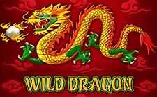 Игровой автомат Wild Dragon
